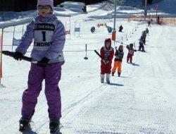 Remontes Estación Esquí