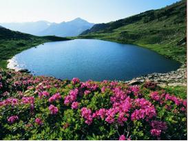 verano-montana