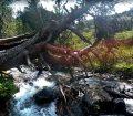 riu-parc-natural-sorteny