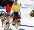 mushing-conduccion-8